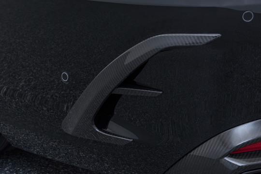 Carbon rear fascia inserts