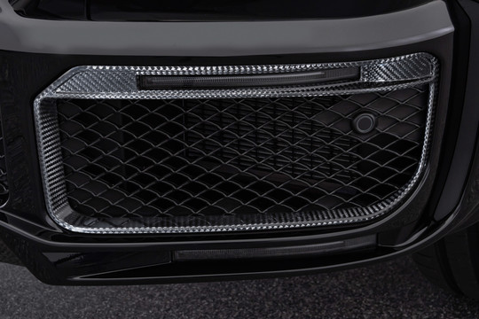 Carbon front fascia inserts for WIDESTAR