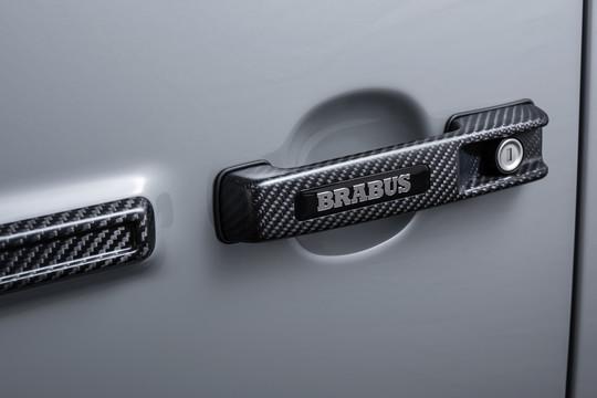 Carbon door handles